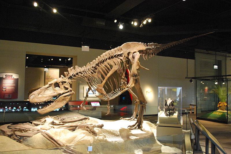 Old Earth Ministries Online Dinosaur Curriculum
